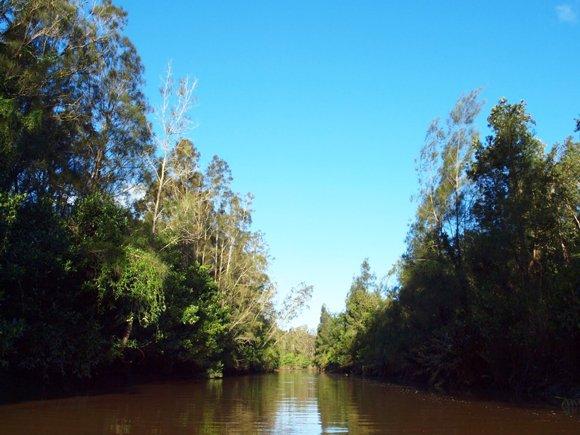 Islands of Bli Bli Paddle Trail Image 2