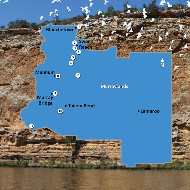 Map of Murraylands Region of South Australia Square Image