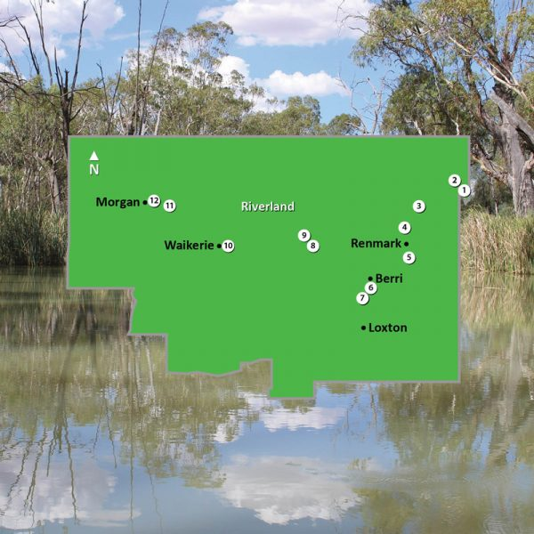 Map of Riverland Region of South Australia Square Image