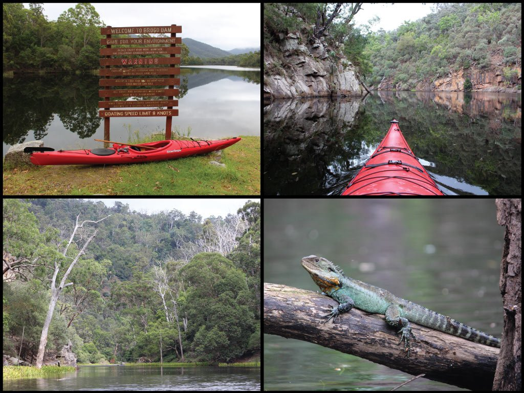 Kayaks, sign, rock formations, and Gippsland water dragon at Brogo Dam