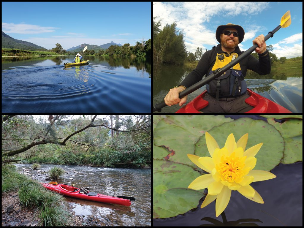Kayakers and a yellow lily flower at the Tweed River and Oxley River Junction in Byangum
