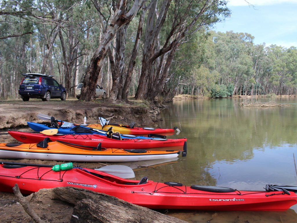 Kayaks on the bank of the Murray River with cars in the background