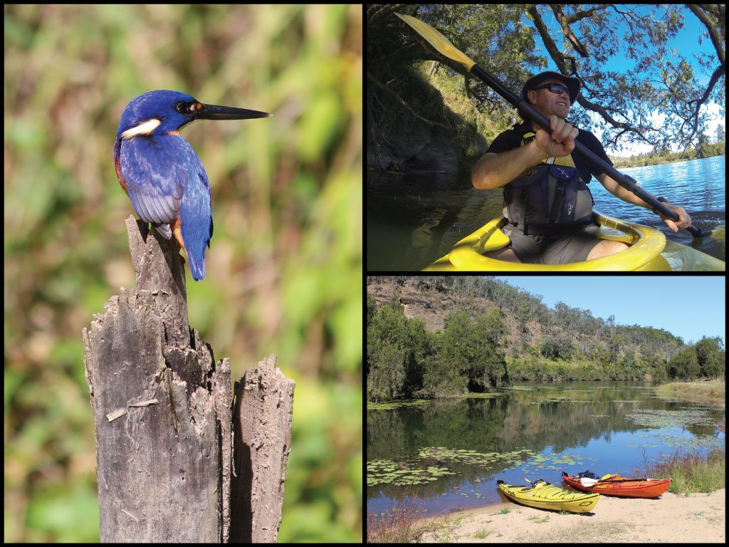 Kayaker, kayaks on beach, and azure kingfisher on the Clarence River at Yates Crossing